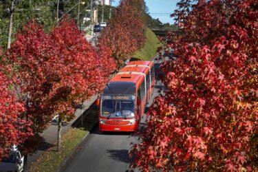 Saiba o que o Simepar Curitiba diz sobre a previsão do tempo no início do outono