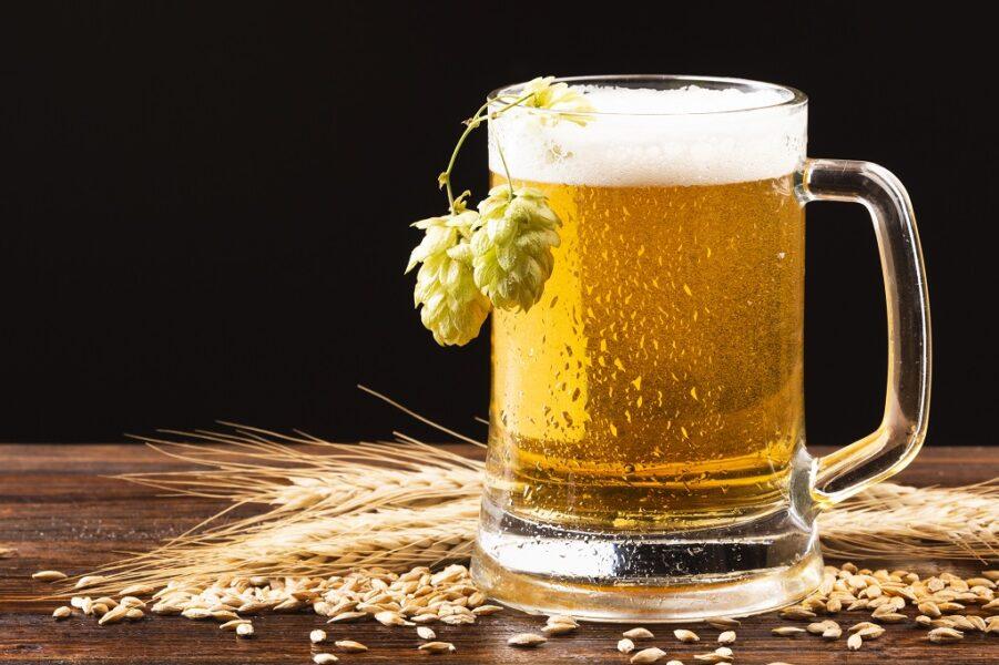 Science of Beer disponibiliza conhecimento cervejeiro gratuito