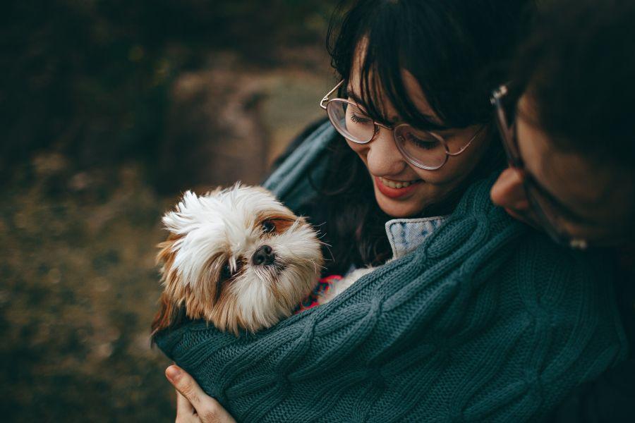 MY PET MY LIFE: startup brasileira lança aplicativo para o mercado pet