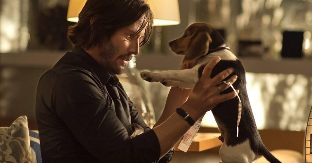 John Wick – Estúdio queria manter o cachorro vivo