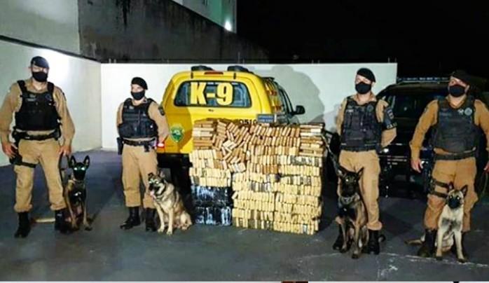 Com auxílio de cães farejadores, polícia encontra grande quantidade de drogas em chácara