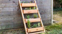 DIY no isolamento: aprenda a fazer um jardim interno