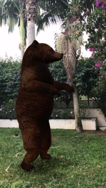animais-3d-google