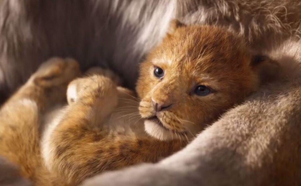 Cinema sem Barreiras promove sessão inclusiva gratuita do filme 'O Rei Leão', em Curitiba