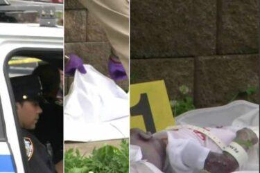 Fake news: bebê encontrado morto em Nova York era boneca reborn