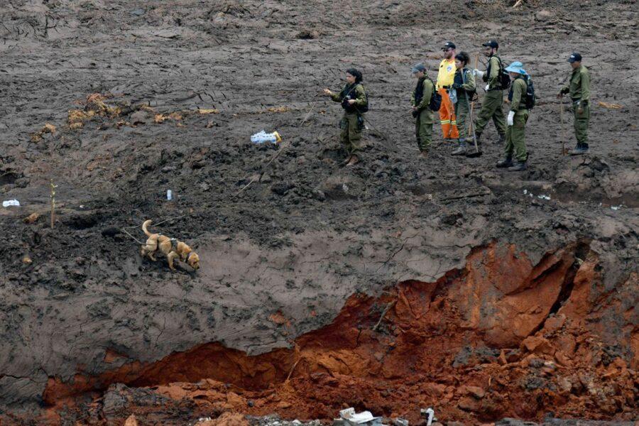 Oito meses depois: bombeiros encontram mais um corpo em Brumadinho