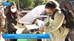 Cascavel em epidemia: Ações de combate ao mosquito da dengue
