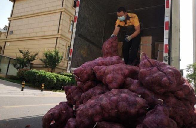 caminhão de cebola