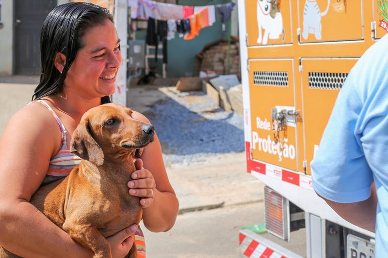 Saiba como agendar a castração gratuita de cães e gatos em Curitiba