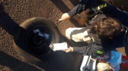 Polícia apreende celulares contrabandeados no interior do Paraná