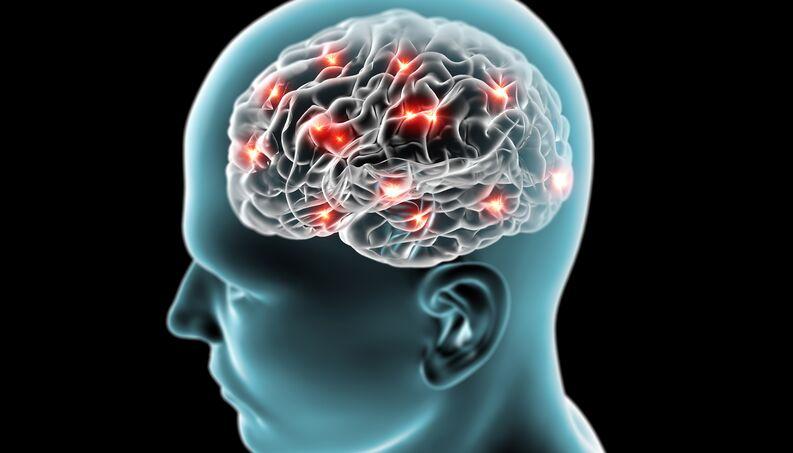 cerebro-neuronios-funcionamento-0817-1400x800