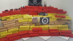 Trio é preso com 220 quilos de maconha e duas armas em Maringá