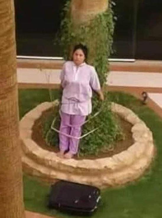 A empregada doméstica foi amarrada na árvore para que se queimasse no sol.