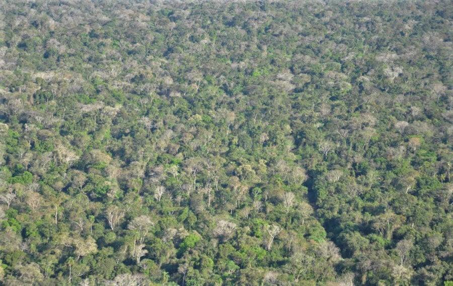 Reabertura de estrada no Parque Nacional do Iguaçu é aprovada com urgência; oposição critica medida