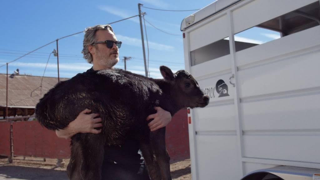 Joaquin Phoenix resgata vaca e bezerro de matadouro um dia após vencer Oscar