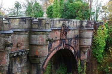 600 cães pulam de ponte na Escócia: conheça o mistério desta história