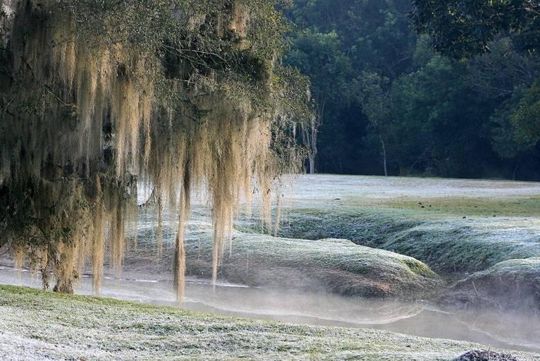 Frio intenso deve chegar no Paraná; previsão de neve
