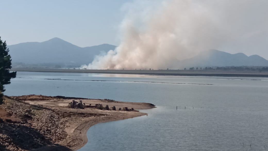 Incêndio de grandes proporções atinge represa do Iraí; veja imagens