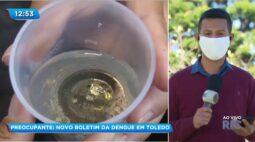 Preocupante: Novo boletim da dengue em Toledo