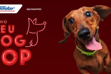 Prêmio Meu Dog é Top: inscreva o seu cãozinho