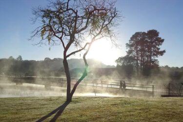 Onda de frio atinge o Paraná, confira as mínimas registradas