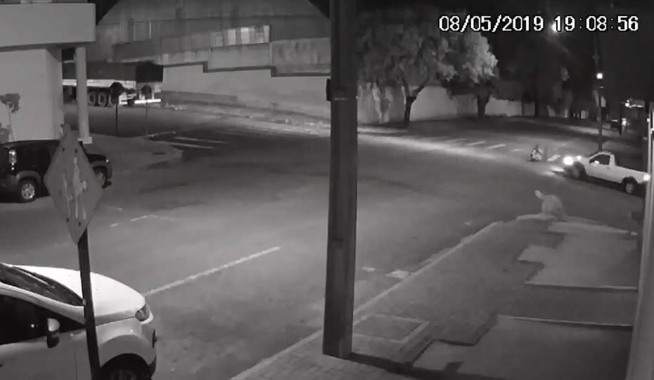 Câmeras registram momento em que motorista atropela paratleta e foge; assista