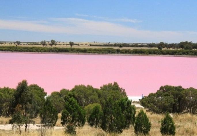 rio rosa