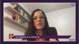 Ver Mais Londrina Ao Vivo |Assista à íntegra de hoje e como fazer as receitas – 29/05/2020