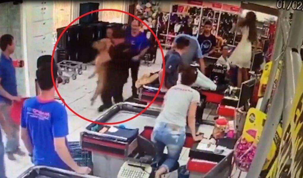 Vídeo: pit-bull persegue e morde criança em Alto Paraná; animal foi morto