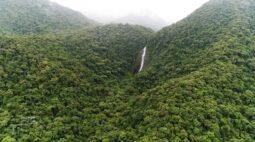 Reserva Natural Salto Morato é santuário ecológico de Guaraqueçaba
