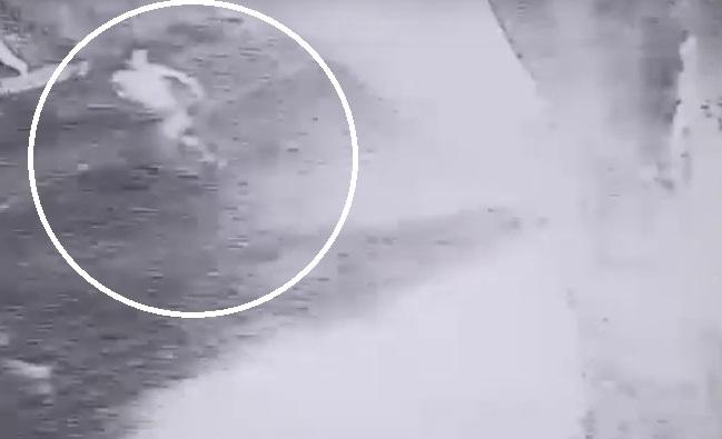 Polícia divulga imagens dos suspeitos de assaltar e raptar sobrinha de Sérgio Moro