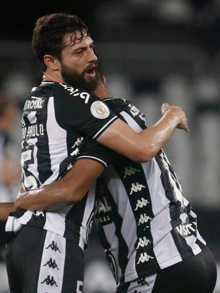 Botafogo vence Avaí e deixa a zona de rebaixamento do Brasileirão