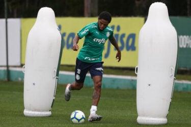 Palmeiras treina neste feriado visando o Bahia; veja fotos