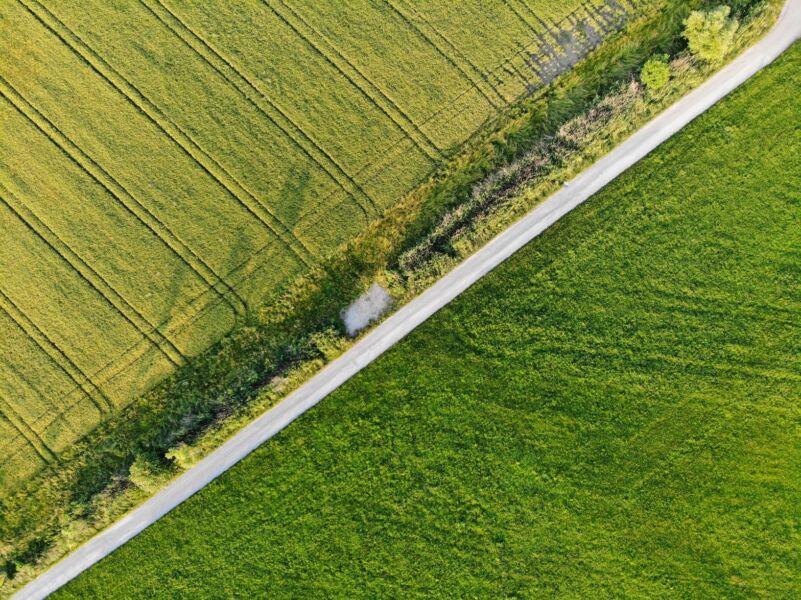 Artigo: entenda a importância da consciência ambiental no segmento de logística