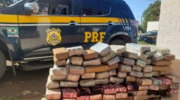 Em menos de 24 horas, PRF apreende quase 2 toneladas de maconha no Paraná