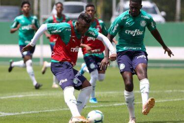 Veja fotos da preparação do Palmeiras para a Copa SP