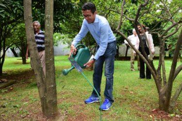Bosque da Fama ganhará novos homenageados no esporte