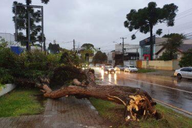 Vídeo: ciclone bomba deixa várias regiões de Curitiba, RMC e litoral sem luz