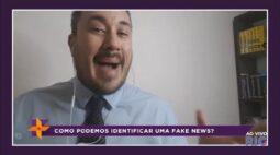 Saiba como identificar uma notícia fake news