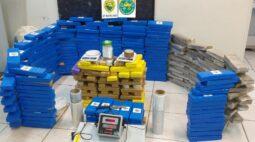 Ação conjunta da Guarda Municipal e Polícia Militar resulta na apreensão de 300 kg de maconha