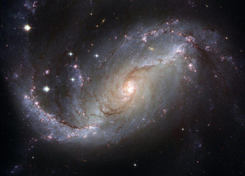 Horóscopo do dia: veja a previsão de hoje 01/08/2020 para o seu signo