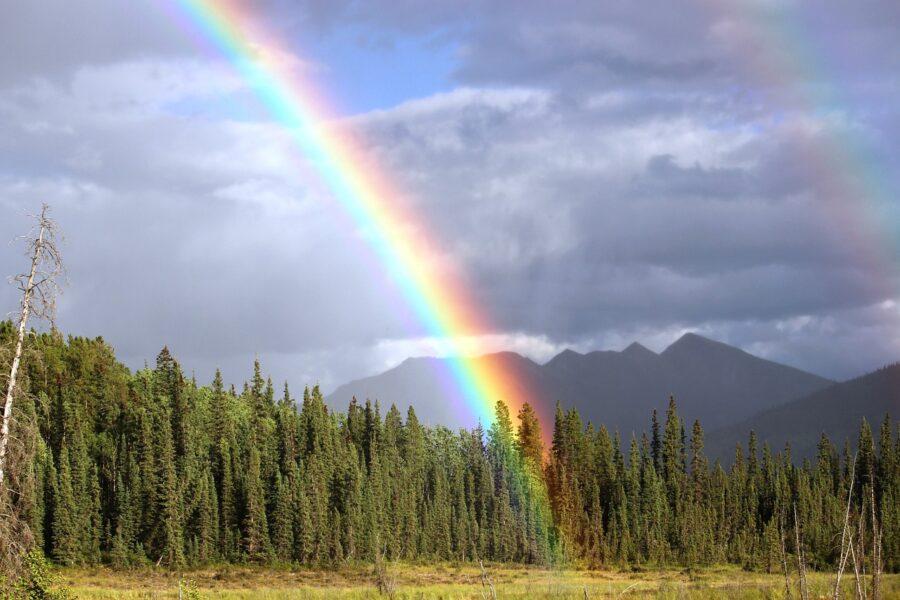 Confira quais são as cores do arco-íris e os seus significados