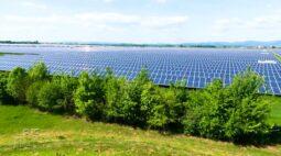 Confira como funciona uma fazenda que produz energia solar na Alemanha