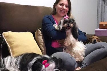 Cachorra Catarina é recuperada por família em Londrina