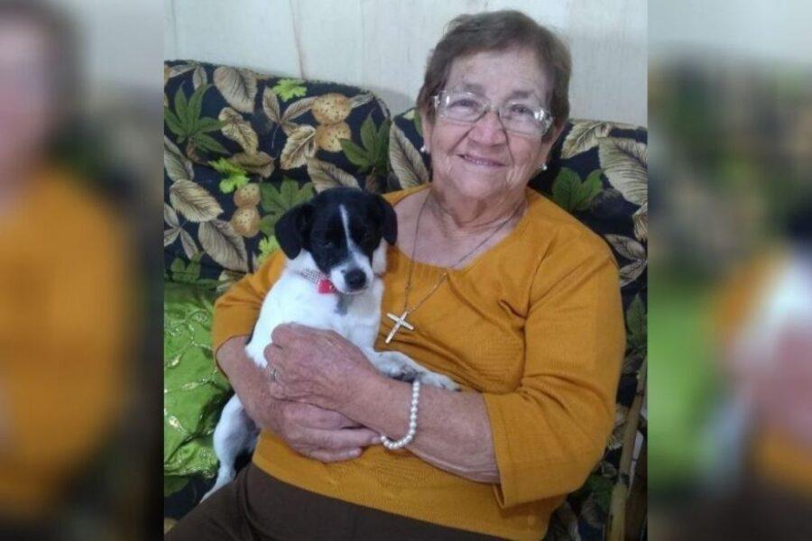 Família procura cachorrinha cega que desapareceu em Umuarama