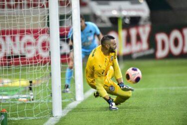 Trio ganha moral no Palmeiras após título do Campeonato Paulista
