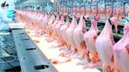 Porto na China envia alerta após encontrar coronavírus em asas de frango do Brasil