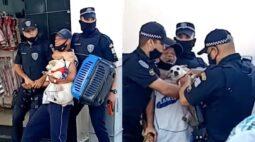 Vídeo: idoso é agredido por guardas municipais com cachorrinha no colo