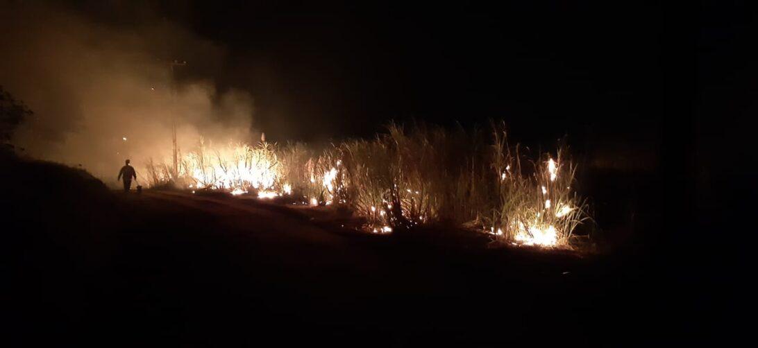Incêndio em canavial destrói ao menos metade da plantação em Maringá