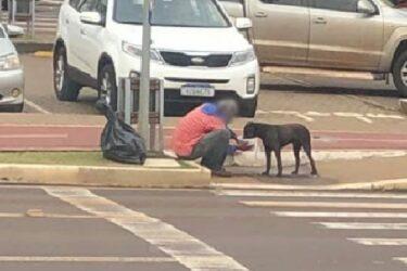 Compaixão! Morador de rua ganha marmita e divide comida com cachorro